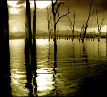 Lake Moogerah Mood by Kym Howard