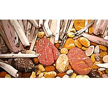 Sticks and Stones Photographic Print