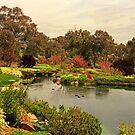 Japanese Garden at Cowra, Australia by TonyCrehan