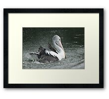 Splash !!! Framed Print