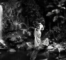 Tamborine Beauty by Kym Howard