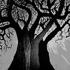 BlAcK BrAnChEs by LESLEY B