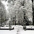 Park by Silvia Eichhorn