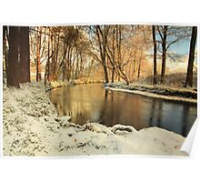River lazily flows through the woods in winter. Poster