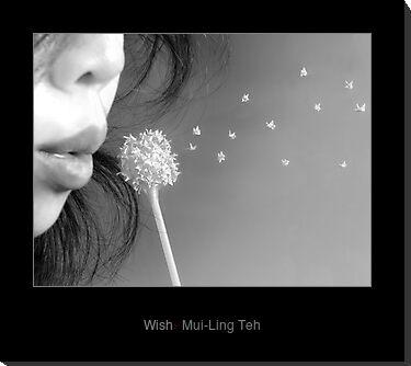 """Wish"" by Mui-Ling Teh"