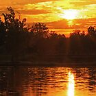Sunrise at Baltz Lake by Susan Blevins