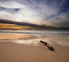 Log   Main Beach   Gold Coast   Australia by Pawel Papis