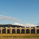 Jezernice Viaduct, Emperor Ferdinand Northern Railway by Petr Svarc