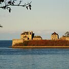 Old Fort Niagara, Youngstown, NY by artwhiz47