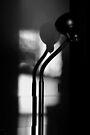 sunlit snakelamp by dedmanshootn