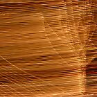 Suburb Light Series - Xmas Wind by David J. Hudson