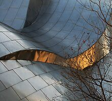 Bare Tree and Steel by Mark Willocks