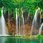 Green vitality. Plitvice waterfalls by evimagery