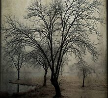 Foggy Morning by Mattie Bryant