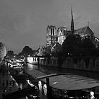 Notre Dame Cathedral in Paris by Matej Kastelic
