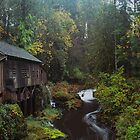Cedar Creek Grist Mill  by John Behrends