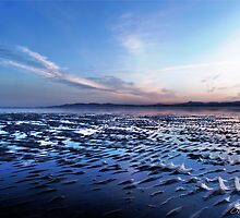 Blue sunset, Sandymount Strand, Dublin, Ireland 1 by Cian T Murphy
