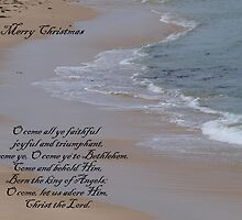 a carol for Christmas... by byzantinehalo