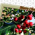 &quot; Holly Berries&quot; by Malcolm Chant