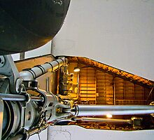 Ant`s Eye View - Concorde - G-BBDG - Brooklands Museum by Colin J Williams Photography