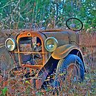 Rusting Away by Alana Ranney