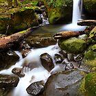 """Green Cascades"" by Husky"