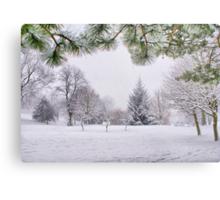 White And Wintery At Peel Park, Bradford Metal Print