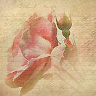 A Rose For You by Brenda Boisvert