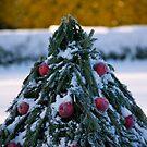 Merry Christmas by LadyFi
