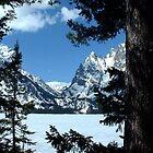 Jenny Lake by Loree McComb