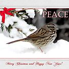 Little Christmas Sparrow by CarolD