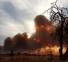 Bush Fire at Sunset. by Christina Thomas