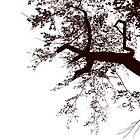 Under a Shedding Tree by Bobbie J. Bonebrake