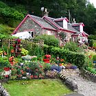 Cottage near Luss in Scotland by Crystallographix