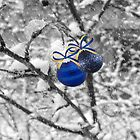 Blue Christmas ©  by Dawn M. Becker