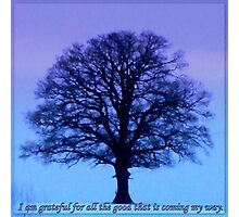 I am grateful for all good featured in 3 groups (see below for details) Photographic Print
