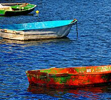 Iron Cove Dinghies by georgevellios