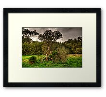 Twisted -  On The Road To Sofala, West of Sydney - The HDR Experience Framed Print