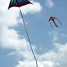 Kites at Blackheath by John Gaffen