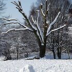 Snow-scape in Hilly Fields Park, Lewisham by John Gaffen