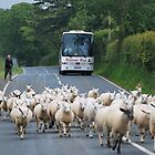 Busy road on North Wales by 29Breizh33