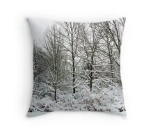 Winter, You Say ~ Hamburg, NY Throw Pillow