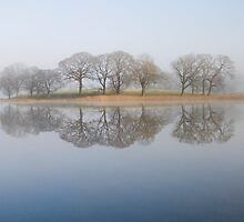 Esthwaite Reflections by Michelle Lovegrove