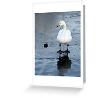 Who Threw the First Stone? Greeting Card