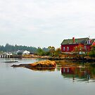 Red House, Corea Harbor, Corea, Maine by fauselr