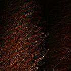 Suburb Christmas Light Series - Xmas Tree by David J. Hudson