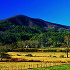 Wolffork Pastureland by Chelei