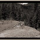 Abandoned Mine Site And Ore Car Tracks by OneRudeDawg