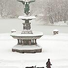 Bethesda Fountain by Ellen McKnight
