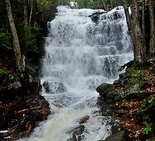 Bear Creek Falls Flowing Fast by Debra Fedchin